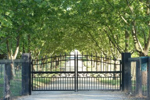 Black Ornamental Fence